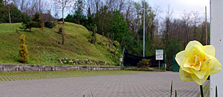 Associazione Foglia Verde ONLUS